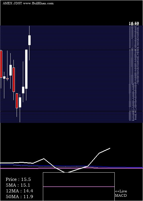 Direxion Daily monthly charts