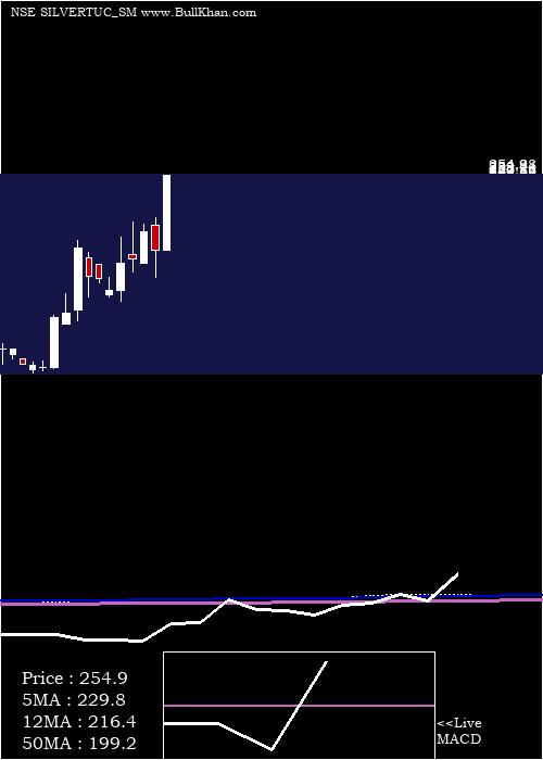Silver Touch monthly charts
